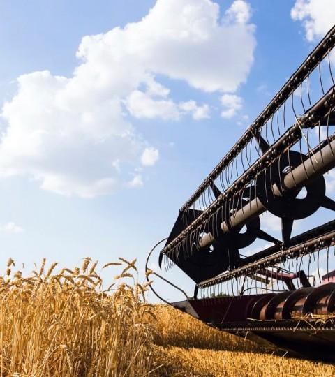 Agriculteur grenier bio